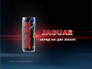 jaguar04