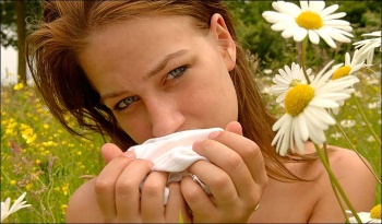 allerg