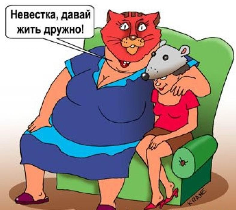 Анекдоты Про Свекровь И Невестку