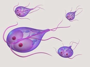 натощак от паразитов