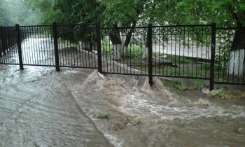 rain113
