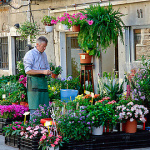 Продавец цветочного магазина о том, зачем женщины сами себе покупают цветы