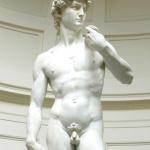 Учёные разобрались в параметрах привлекательности пенисов
