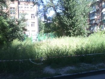 trava1