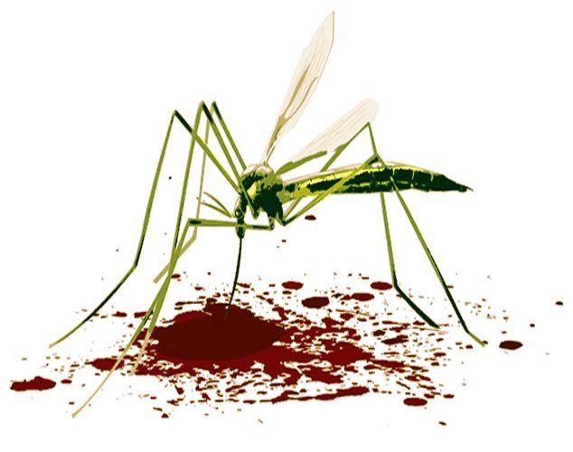 Укусил комар чем лечить