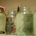 Живая и мертвая: можно ли пить воду из-под крана