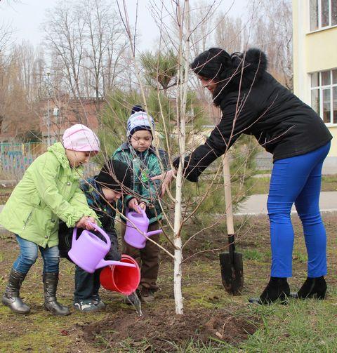Семья сажает дерево