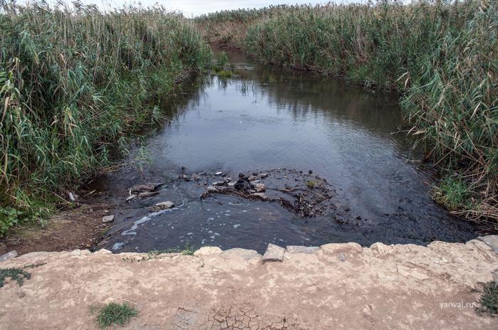 Водоканал Новочеркасска сбрасывал неочищенные стоки вТузловку иАксайскую протоку