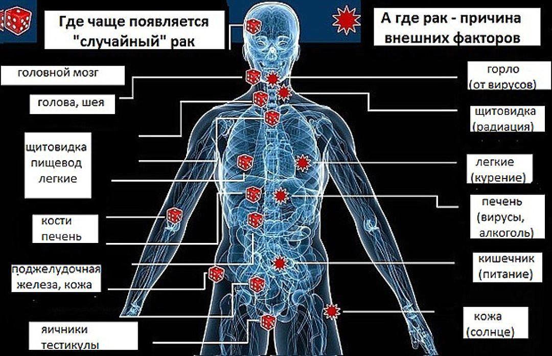 Как сделать рак человеку