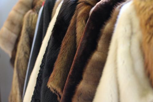 НаСтаврополье начали изымать меховые изделия без маркировки