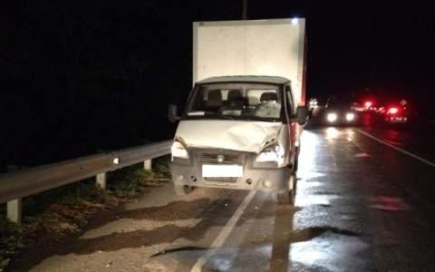 Под колесами «Газели» натрассе вРостовской области умер пешеход