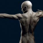 98 интересных фактов о человеческом теле