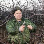 Особенности обрезки и ухода за грушевыми деревьями — полезные советы