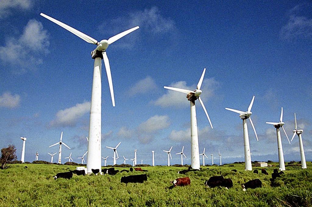 Где в РФ построят огромную ветроэлектростанцию за10 млрд руб.