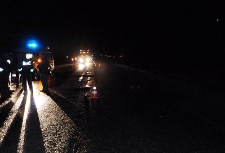 ВНовочеркасске под колесами иномарки погибли два пешехода