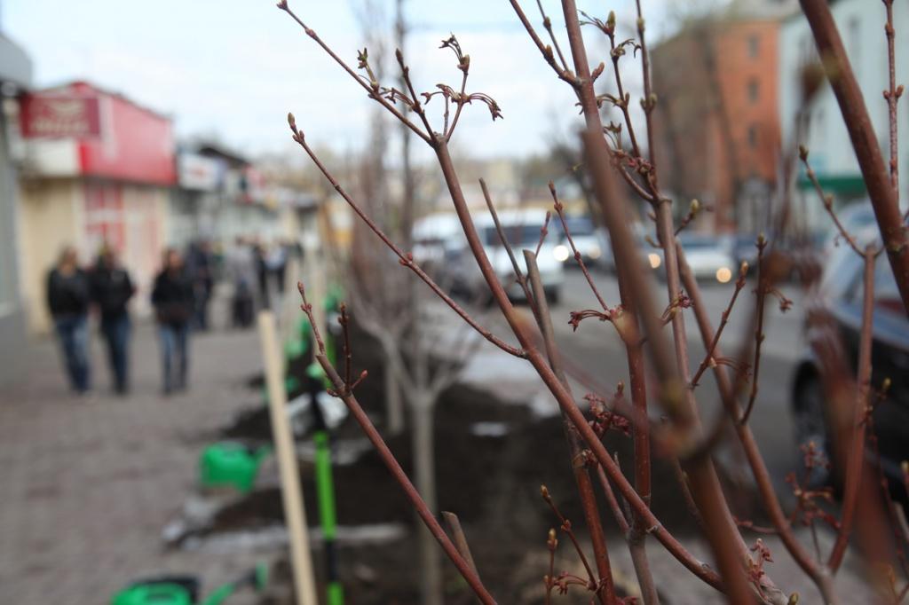 Донские народные избранники приняли участие вДне древонасаждения