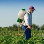 О применении гербицидов на дачных участках