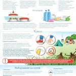 Как отдохнуть на природе и не навредить здоровью