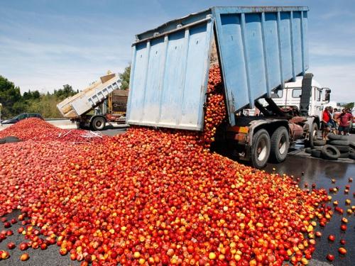 ВРостовской области уничтожили 7,5 тонн черешни без маркировки