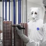 Можно ли умереть в России от инфекции, вызванной супербактерией?