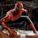 Найден способ избавления от пауков в доме