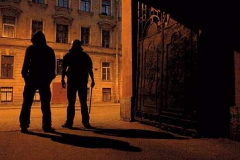 Бесстрашные злоумышленники избили брата иограбили его сестренку под Ростовом