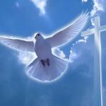 Что можно и чего нельзя делать в Крещение Господне