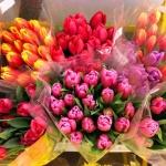 Как и какие выбрать цветы в подарок женщине на 8 Марта
