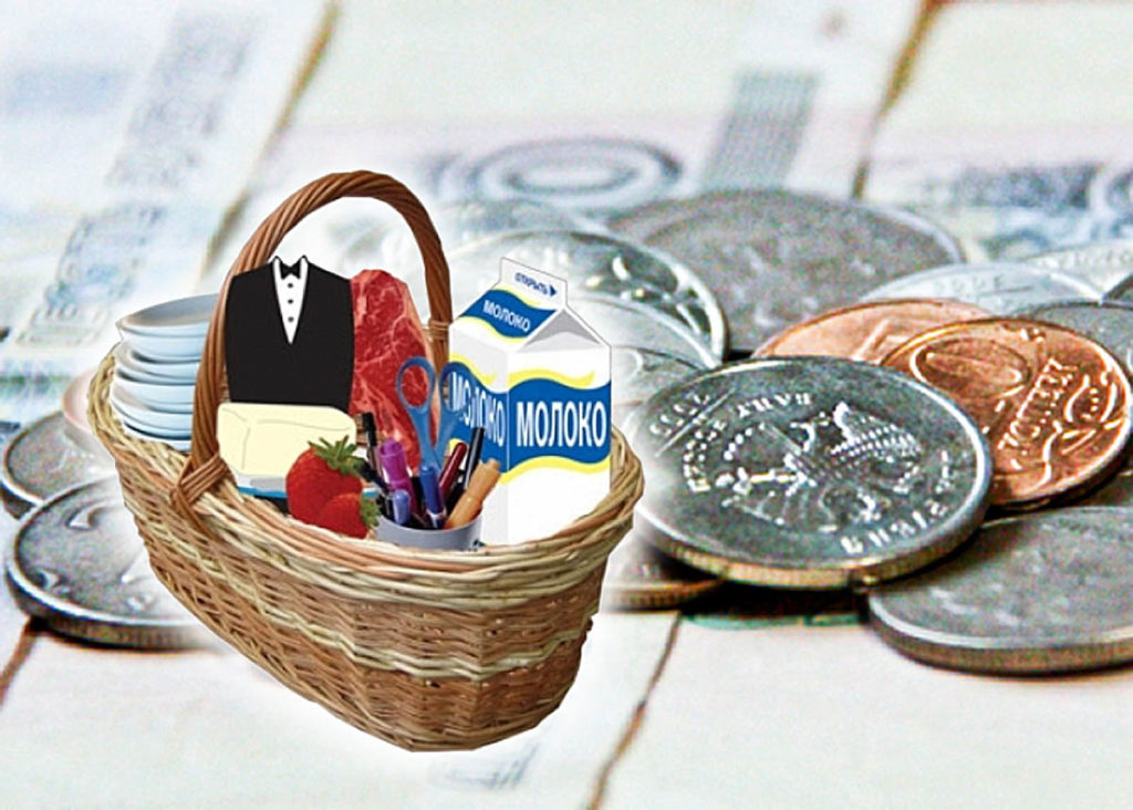Прожиточный минимум вРостовской области понизился на5,3%