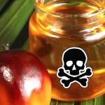 Ученые рассказали, как жирная еда и пальмовое масло губят организм