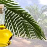 Вред пальмового масла доказан