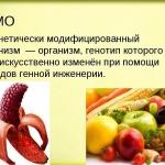 О пищевых продуктах, содержащих ГМО