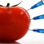 Что такое ГМО и перечень содержащих генетически модифицированные организмы продуктов