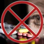 Как уберечь себя и детей от наркотиков (советы для родителей, школьников и специалистов)